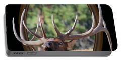 Portable Battery Charger featuring the photograph Colorado Bull Elk by Shane Bechler