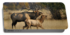 Colorado Elk  Portable Battery Charger by Nava Thompson
