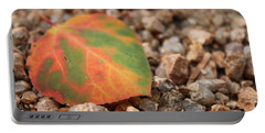 Portable Battery Charger featuring the photograph Colorado Fall Colors by Christin Brodie