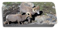 Colorado Rams Portable Battery Charger