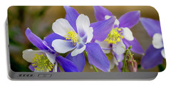 Colorado Wildflower Blue Columbines Portable Battery Charger