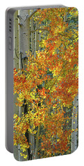 Colorful Aspen Along Million Dollar Highway Portable Battery Charger