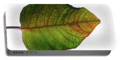 Colorful Autumn Leaf On White Background Portable Battery Charger