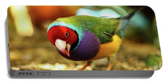Colorful Bird Portable Battery Charger