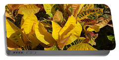 Colorful Crotons Portable Battery Charger by Kenneth Albin
