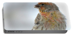 Colorful Finch Eating Breakfast Portable Battery Charger