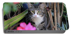 Colorful Kitty Portable Battery Charger
