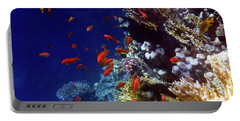 Colorful Lyretail Anthias Portable Battery Charger