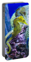 Colorful Seahorses Portable Battery Charger