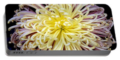 Colorful Spider Chrysanthemum   Portable Battery Charger
