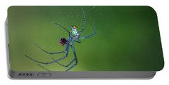 Colorful Spider In Web Portable Battery Charger