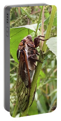 Colorful Summer Cicada Portable Battery Charger