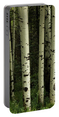 Portable Battery Charger featuring the photograph Colors And Texture Of A Forest Portrait by James BO Insogna