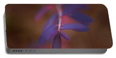 Portable Battery Charger featuring the photograph Colors In Winter by Shane Holsclaw