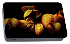 Portable Battery Charger featuring the painting Colors Of Autumn Memories  by David Dehner