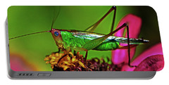 Portable Battery Charger featuring the photograph Colors Of Nature - Grasshopper On A Zinnia 001 by George Bostian