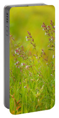 Colors Of Spring Portable Battery Charger by Rachel Mirror