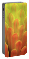Colors Of The Sun Portable Battery Charger