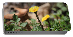 Coltsfoot Portable Battery Charger