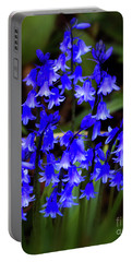 Portable Battery Charger featuring the photograph Common Bluebell by Baggieoldboy