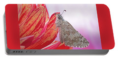 Common Checkered Skipper Portable Battery Charger