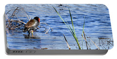 Common Gallinule Portable Battery Charger by Gary Wightman