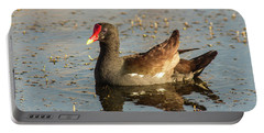Portable Battery Charger featuring the photograph Common Gallinule by Robert Frederick