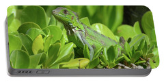 Common Iguana Frolicking In The Shrubbery Portable Battery Charger by DejaVu Designs