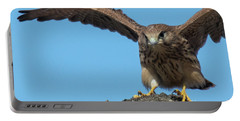 Portable Battery Charger featuring the photograph Common Kestrel Juvenile - Falco Tinnunculus by Jivko Nakev
