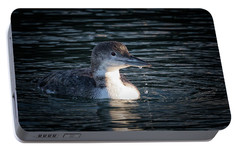 Portable Battery Charger featuring the photograph Common Loon by Randy Hall