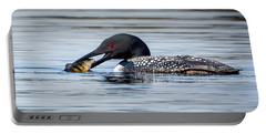 Common Loon Square Portable Battery Charger