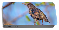 Common Starling - Sturnus Vulgaris Portable Battery Charger by Jivko Nakev