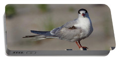Common Tern Portable Battery Charger