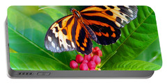 Common Tiger Glassywing Butterfly Portable Battery Charger