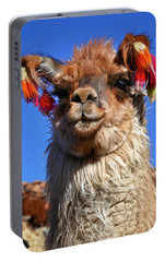 Portable Battery Charger featuring the photograph Como Se Llama by Skip Hunt