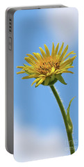 Compass Plant Portable Battery Charger