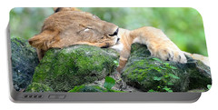 Contented Sleeping Lion Portable Battery Charger