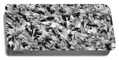 Portable Battery Charger featuring the photograph Controlled Chaos Bw by Everet Regal