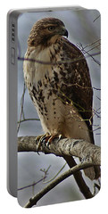 Cooper's Hawk 2 Portable Battery Charger