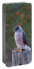 Coopers Hawk Perched Portable Battery Charger