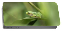 Cope's Gray Treefrog Portable Battery Charger