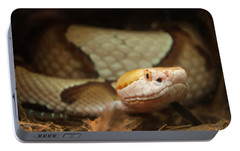 Portable Battery Charger featuring the digital art Copperhead by Chris Flees