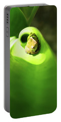 Portable Battery Charger featuring the photograph Coqui Frog by Anthony Jones