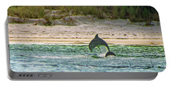 Coquina Dolphin Portable Battery Charger