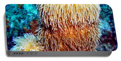 Portable Battery Charger featuring the photograph Corky Sea Finger Coral - The Muppet Of The Deep by Amy McDaniel
