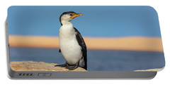 Cormorant Portable Battery Charger