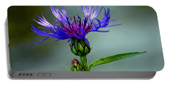 Portable Battery Charger featuring the photograph Cornflower by Rodney Campbell