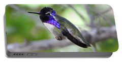 Costa's Hummingbird Portable Battery Charger