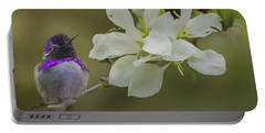 Costas Hummingbird On An Anacacho Orchid Branch Portable Battery Charger