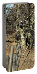 Cottonwood Stand Portable Battery Charger